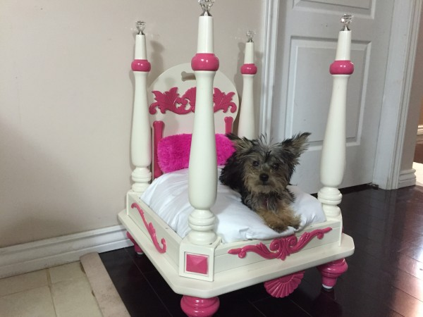 upcycle furniture into a pet bed