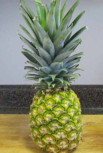 jm-allcreated-grow-pineapple-at-home-1