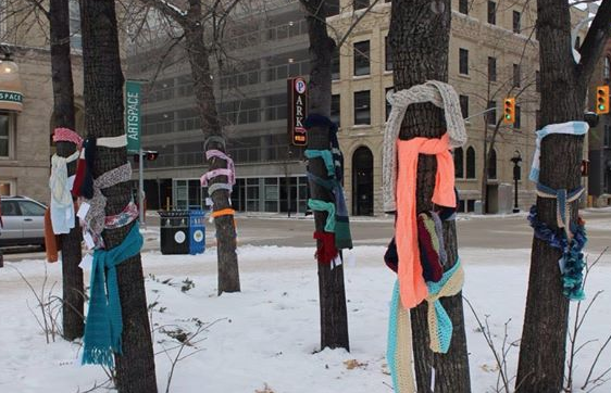jm-allcreated-scarves-on-trees-for-anyone-1