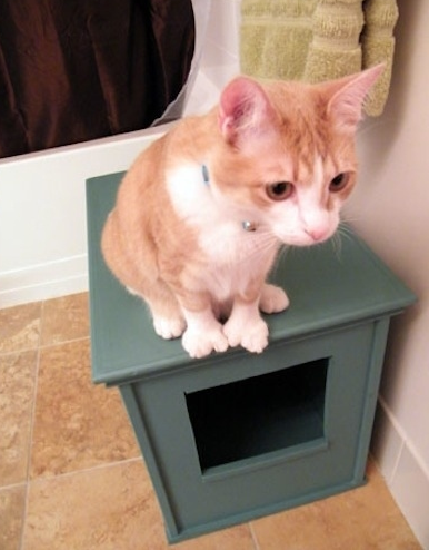 jm-allcreated-hiding-spots-for-cat-litter-box-4