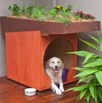 jm-allcreated-dog-beds-kennels-backyard-6