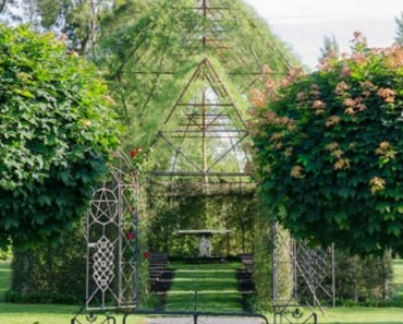 mans builds tree church from trees plants flowers only