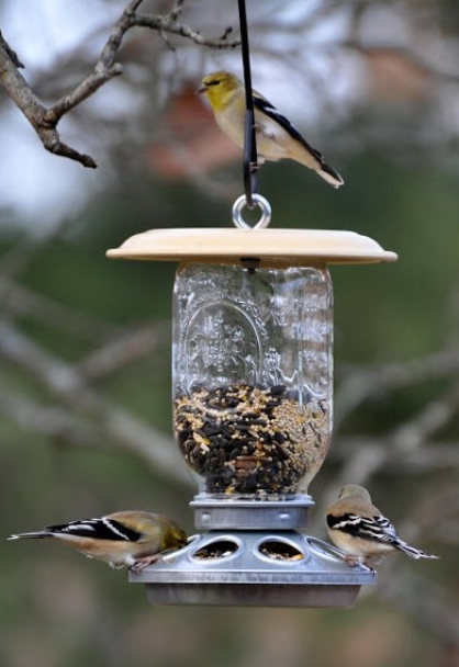 jm-allcreated-DIY-birdfeeders-4