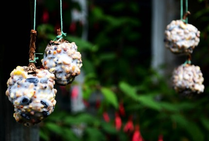 jm-allcreated-DIY-birdfeeders-11