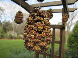 jm-allcreated-squirrel-feeders-DIY-5