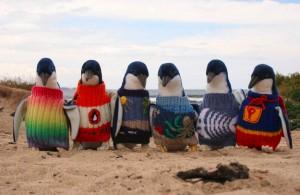 jm-allcreated-penguin-sweaters-1