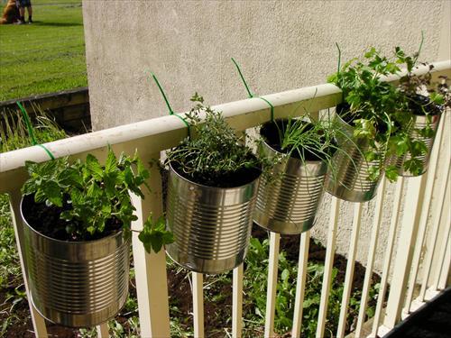 All Created - hanging flower basket ideas -diy-balcony