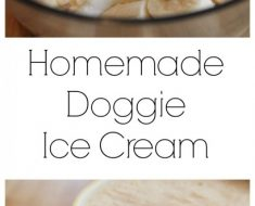All Created - Homemade doggie icecream