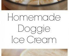 All Created - Homemade doggie icecream