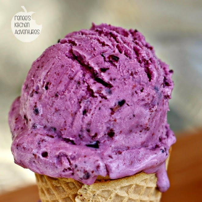 All Created - Frozen Blueberry Yogurt