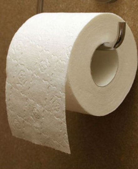 All Created - ToiletToilet Paper On A Public Seat