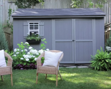 All Created - Back Yard Makeover Tips