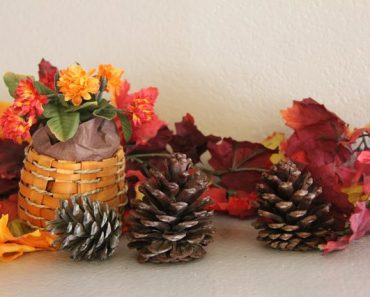 All Created - Cinnamon Scented Pinecones