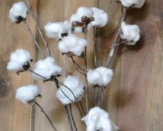 All Created - DIY Cotton Stems