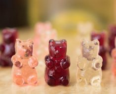 All Created - Wine Gummy Bears