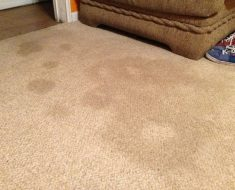 All Created - Remove Carpet Stains