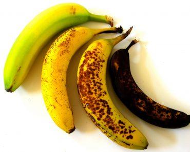 All Created - Overly Ripe Bananas