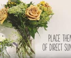 All Created - Make Fresh Flowers Last Longer