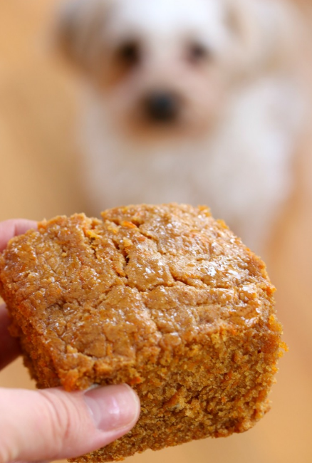 AllCreated cake dog treat