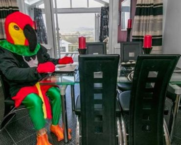 Man Dresses Up Like Parrot To Sell His House _ dining room _ food _ all created
