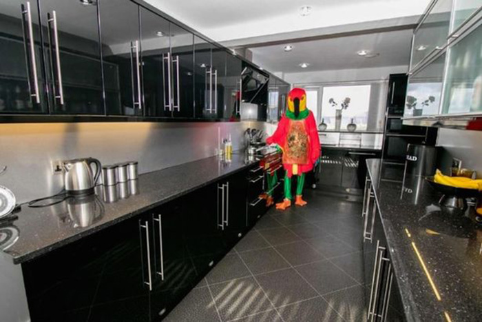 Man Dresses Up Like Parrot To Sell His House _ all created