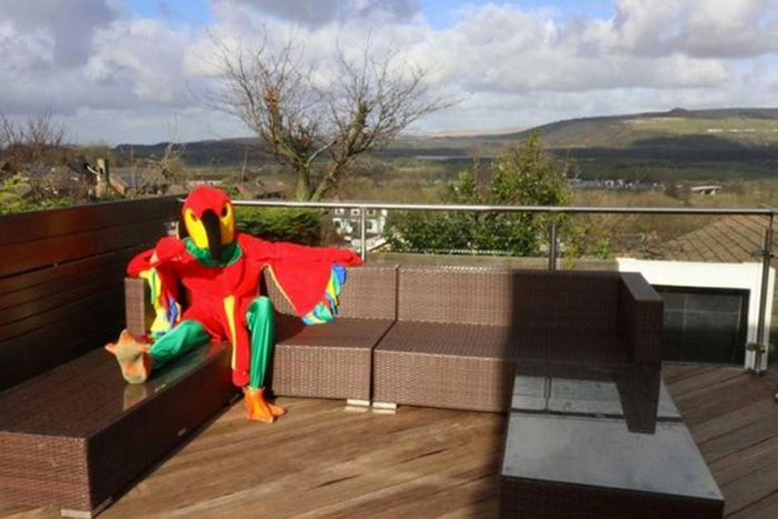 Man Dresses Up Like Parrot To Sell His House _ Toasts _ Patio deck _ all created