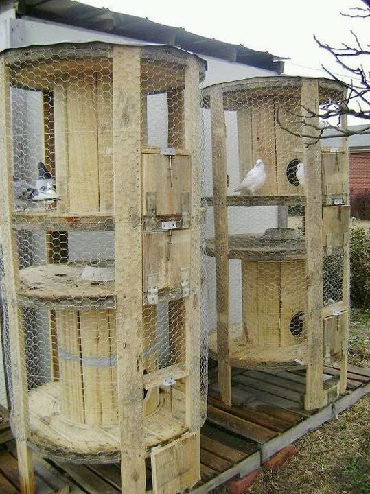 upcycled wooden cable spools _ chicken coop_allcreated