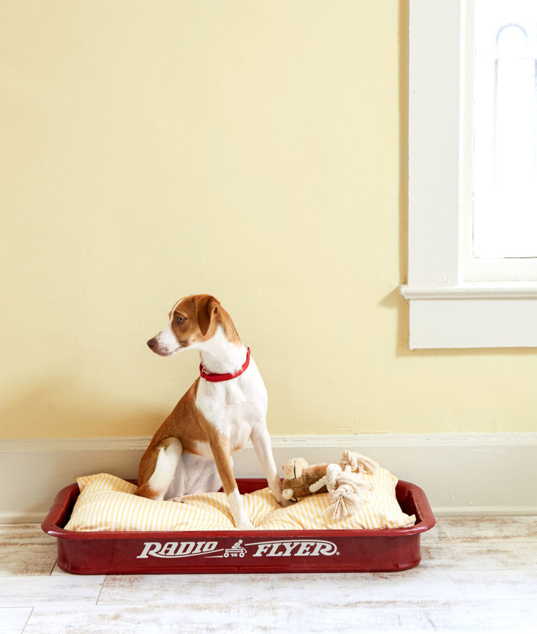 Upcycled Red Wagon Pet Bed- AllCreated