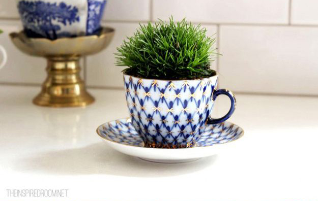 DIY Cactus Succulent Garden Makeovers From The Bargain Bin _ tea cup _ all created