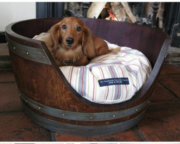 7 Creative Ways To Turn Old Furniture Into Adorable Pet Beds _ all created