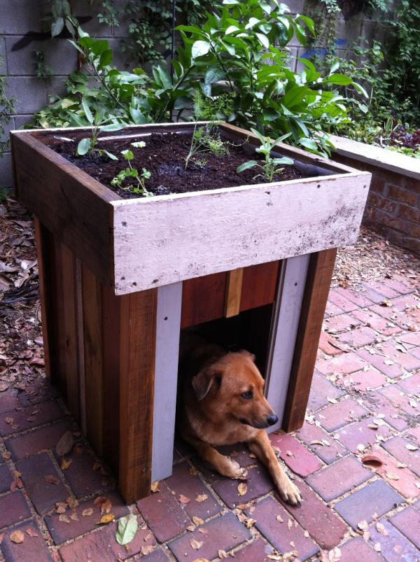 7 Creative Ways To Turn Old Furniture Into Adorable Pet Beds _ garden _ all created