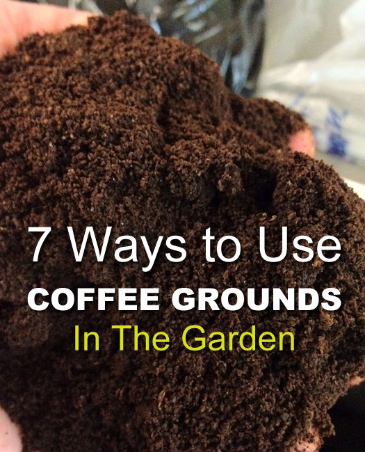 allcreated - coffee ground garden hacks 1