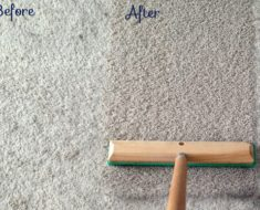 allcreated - carpet pet hair removal