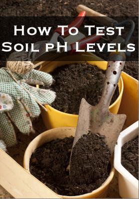 allcreated - diy soil ph test