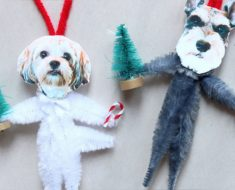 allcreated- pet ornaments