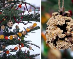 allcreated - recycled christmas tree bird feeder